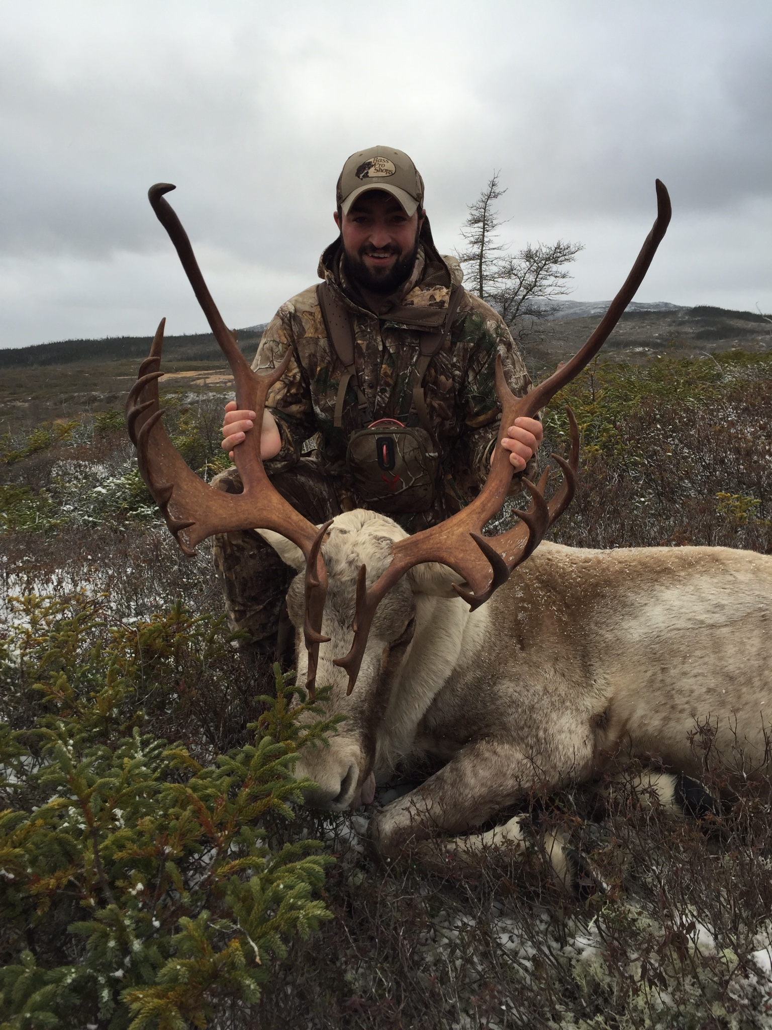 BOOK YOUR DREAM HUNT TODAY GUIDED CARIBOU HUNTS